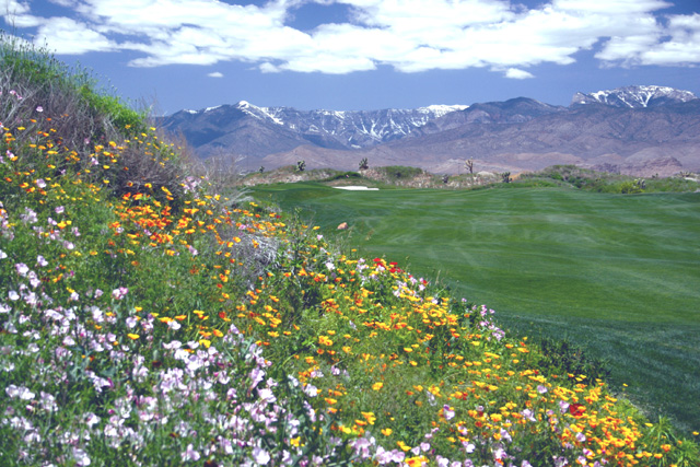 Get 4 Nights Free When You Golf Las Vegas!